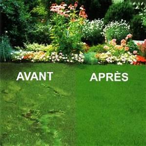 les conseils bricolage de misterbricolo jardin comment With comment refaire son jardin