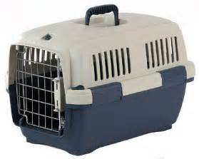 cat carrier cat in carrier free valentines day wallpapers