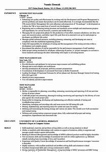 great qa manager resume india images resume ideas With test lead resume sample india