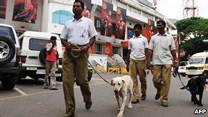 BBC News - India police dogs in disgrace after having puppies
