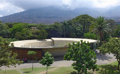 Jardín Botánico De Medellín Lugares De Exposición
