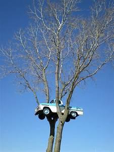 Odd Wisconsin Attractions  Clinton U0026 39 S Truck In The Tree