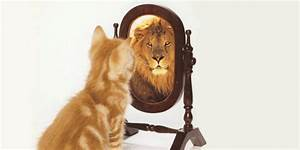 7 Daily Habits to Gain Self-Confidence and Better Health ...  Self