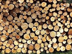 1 Stère De Bois En Kg : promo granul s de bois jardi bois ~ Dailycaller-alerts.com Idées de Décoration