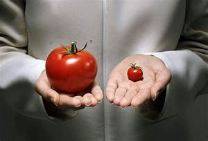 Connection Between Gmos And Evolution