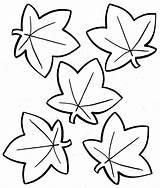 Maple Coloring Syrup Pages Leaf Printable Getcolorings Shapes Unique sketch template