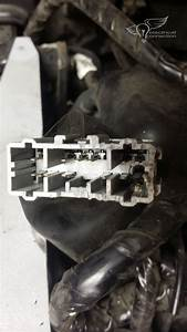 Honda Gl1800 Rear Harness Grounds  U2013 Electrical Connection