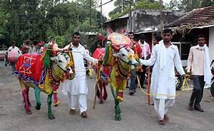 November 2020 Calendar Print Pola Festival Maharashtra India 2020 Dates Festival