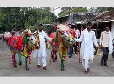Pola Festival, Maharashtra India 2019 Dates, Festival