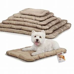 Dog beds for heavy chewers home design idea for Dog beds for heavy chewers