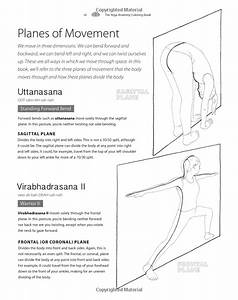 The Yoga Anatomy Coloring Book  A Visual Guide To Form