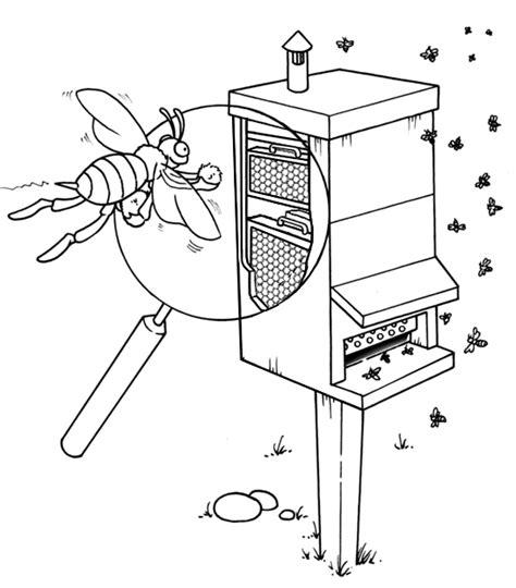 disegni per bambini asilo midisegni it disegni da colorare per bambini insects