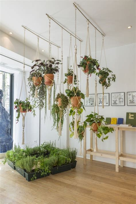 Best Indoor Window Plants by 41 Indoor Hanging Planters You Can Make Yourself House
