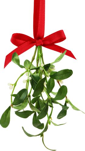 mistletoe is a tradition for search results for mistletoe symbol calendar 2015