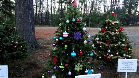 slater park christmas trees 2014 hd rhode island ri tree