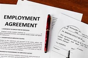 homework help nyc employment law status essay employment law status essay