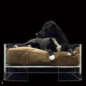 thedesignerpad the designer pet my top 10 pet beds With top dog furniture