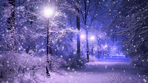 snowing   night park hd wallpaper wallpaper studio