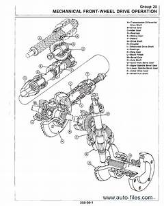 Stihl Fs 56 Parts Diagram