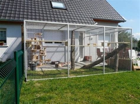 cage pour chat exterieur les 25 meilleures id 233 es de la cat 233 gorie enclos ext 233 rieur pour chat sur enclos pour