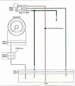 3 Speed Sensor Wire Diagram