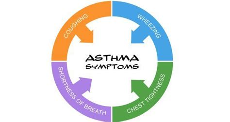 World Asthma Day Dos And Don'ts To Manage Asthma Better. Travel Turkey Banners. Cigarette Stickers. Tsum Tsum Stickers. Festival Murals. Spongiform Encephalopathy Signs. Construction Lettering. Pink Triangle Banners. Etam Cru Murals