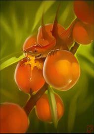 Dragon Fruit Peach