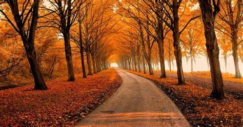 30+ Mind Blowing Fall Photos For This Autumn Glazemoo