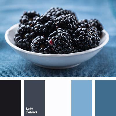 blackberry color palette ideas