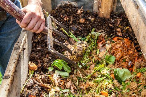best compost for vegetable garden compost worm farming falls retreat