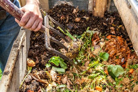 image of kitchen compost bin compost worm farming falls retreat