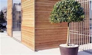 Blockbohlen Nut Und Feder : profilholz profilbrettkrallen zubeh r bei hornbach kaufen ~ Whattoseeinmadrid.com Haus und Dekorationen