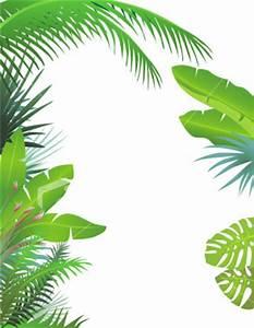 Rainforest Borders - ClipArt Best