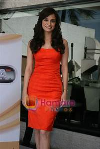 Dia Mirza at the Launch of Love Breakups Zindagi
