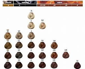 Loreal Majirel Hair Color Chart Majirel Haircolor Treatment By L 39 Oreal Professionnel