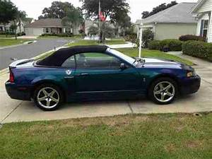 Buy used 2004 Ford Mustang SVT Mystichrome, Mystic Cobra Convertible 4.6 Supercharged in ...