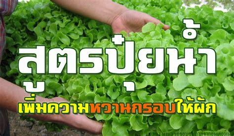 สูตรปุ๋ยน้ำเพิ่มความหวานกรอบให้ผัก - เกษตร นานา