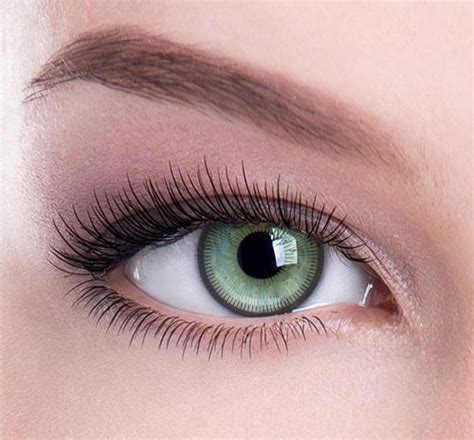 green color contacts bargain fresher look light green colored contacts