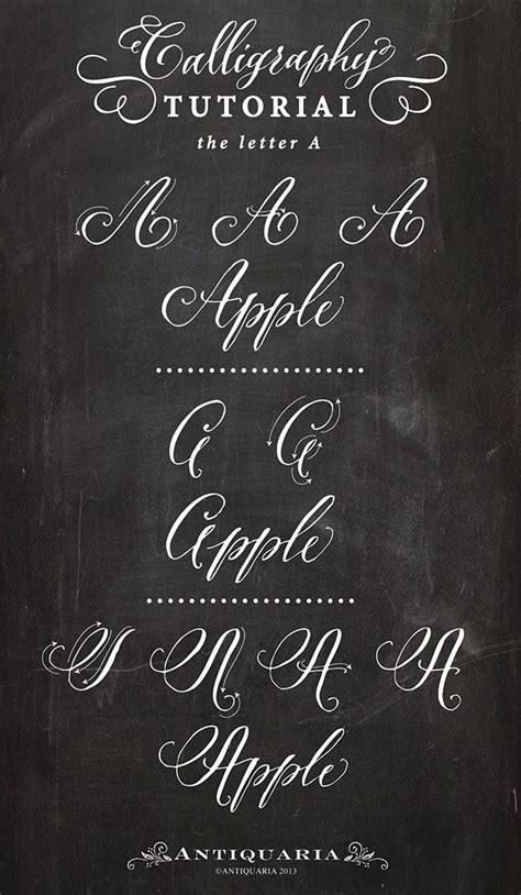 antiquaria calligraphy tutorial  capital letter