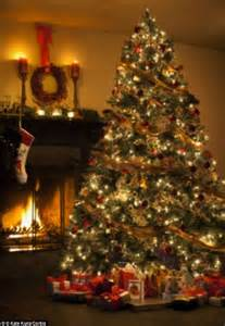 what s lurking in your christmas tree up to 25 000 creepy crawlies could be hiding among your