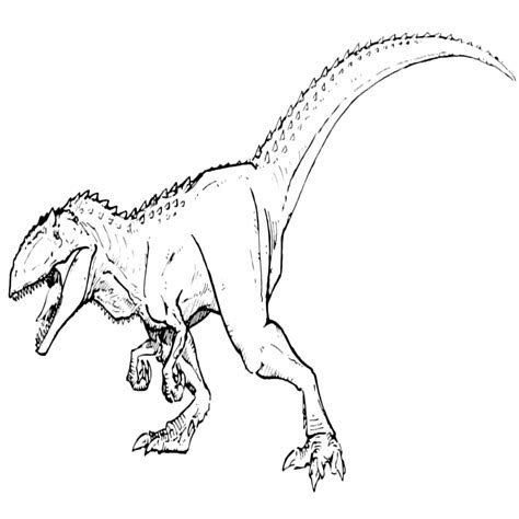 stampare dinosauri da colorare   pagine da colorare