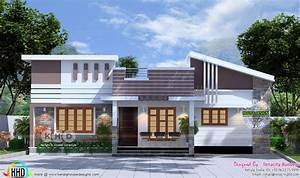 Attractive, Modern, One, Story, House, Design