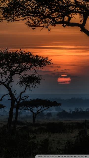 sunrise  masai mara kenya africa  hd desktop