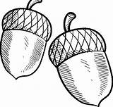 Acorn Coloring Pages Buckeye Oak Sheet Leaves Drawing Acorns Line Coloringsky Getdrawings Blowing Clipartmag sketch template