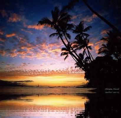 Mare Hawaii Animate Natura Immagini Tramonti Maui