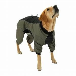 Arthrose hund nahrungsergänzung