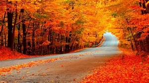 Fall Wallpaper Full Hd Free Download > SubWallpaper
