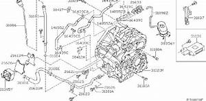 Nissan Maxima Engine Coolant Hose  Fitting  Assembly