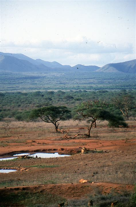 tsavo west national park travel guide  wikivoyage