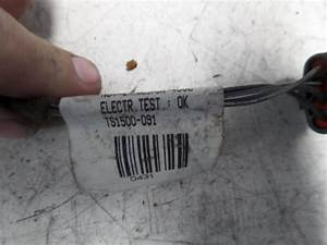 Used Renault Megane Ii  Bm  Cm  1 6 16v Wiring Harness